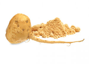 Maca root: increases energy, stamina, and immunity