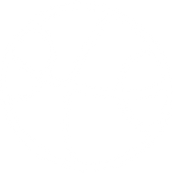 icon-sport.png