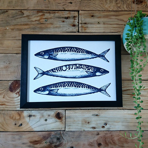 Mackerel with a twist! UNFRAMED print