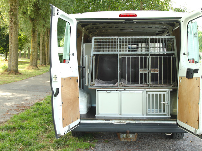 Hondenvervoer uitlaatservice Het Hondenmeisje Den Haag