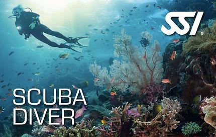 Scuba Diver French Touch Plongée à Malte