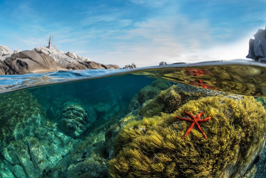 Site de plongée malte.jpg