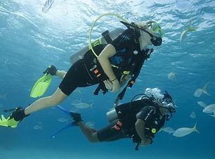 French Touch Diving Plongée à Malte Gozo Exploration Scubadiving Fun Dive Exploration Malta Gozo