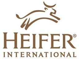 heifer-e1594834148280-300x226.jpg