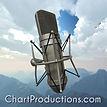Chart Productions logo.jpg