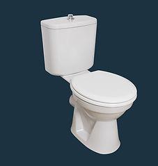 ProTea Close Coupled WC