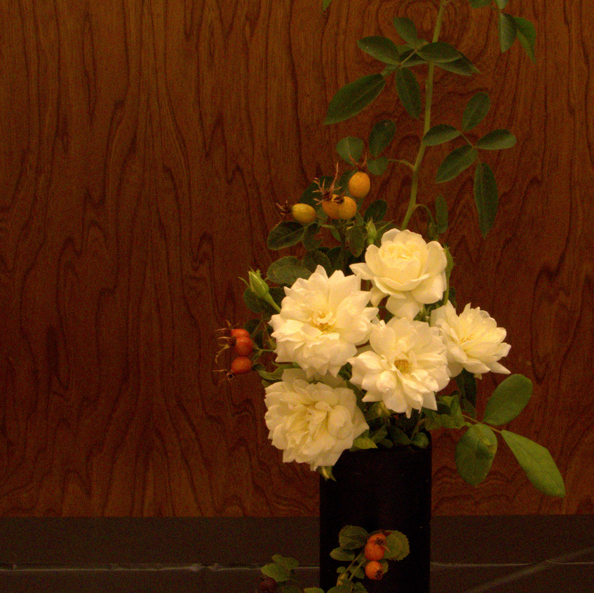 Butte Rose Society Show