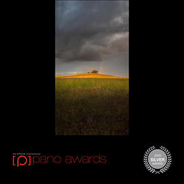 2020-Epson-Pano-Awards-Score-Open Awards