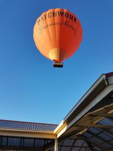 Balloons Barossa.jpg