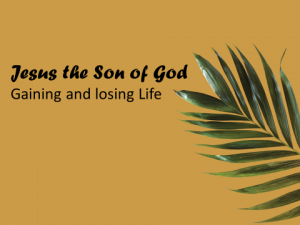h-icon_ch25-jesus-losing-and-gaining-sp