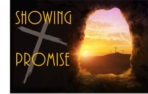 Showing Promise – Thankful and Responsive