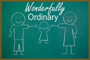 20121130_ordinary_-_LARGE