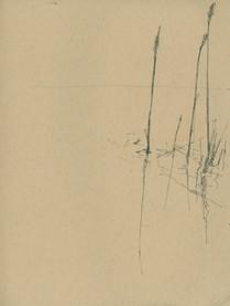 Sketch16_77.jpg