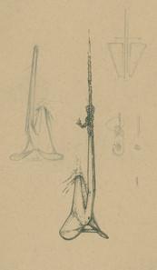 Sketch16_10.jpg