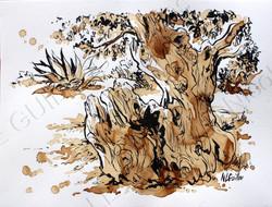 olivier couleur café