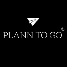 Copy of LOGO PRETO PLANN TO GO.png