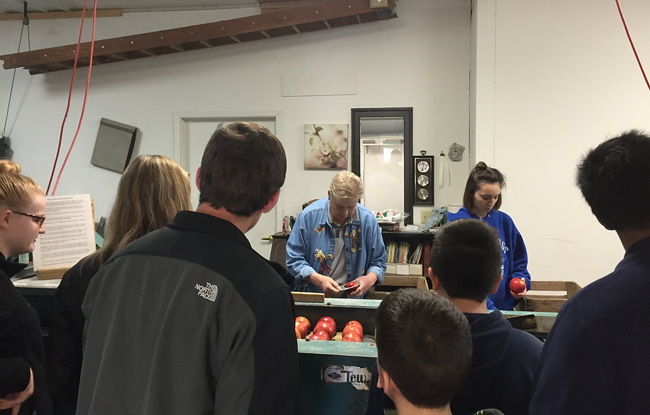 Karen Nelson showing a crowd how apples are sorted