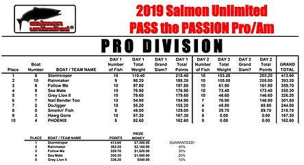 ptp pro results.png
