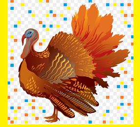 festive turkey.png