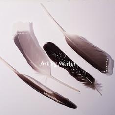 FeatherArt   VerenKunst