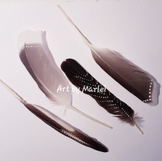 FeatherArt | VerenKunst