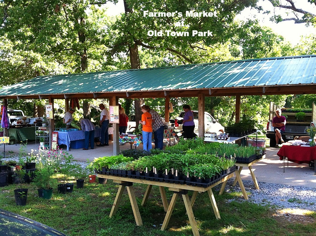 Farmer's Market at Old Town Park