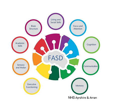 FASD effects 2.png