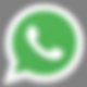 icono wapp 1 fondo gris.png