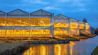 Greenhouse Cannabis Funding