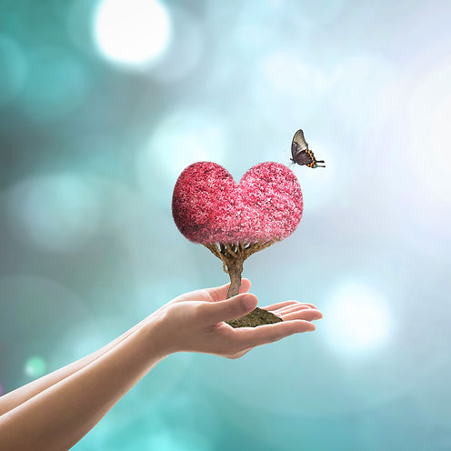 Self-love is living in harmony with yourself and the world, naturopathc consltations are available in Sydney CBD, self-love, selflovenaturopathy, self-love naturopathy, Sydney CBD Naturopath, Olga Bokalova