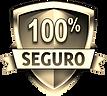 site100porcentoseguro.png