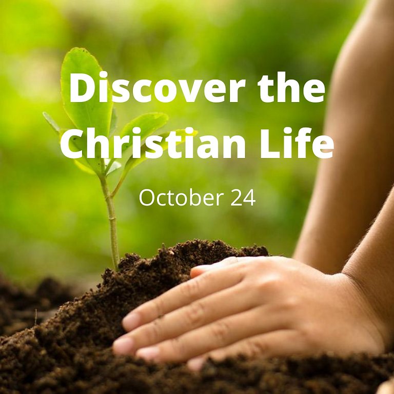 Discover the Christian Life--Class 101