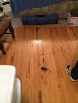 Existing Wood Floor