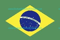 Brazilian Flag Flat