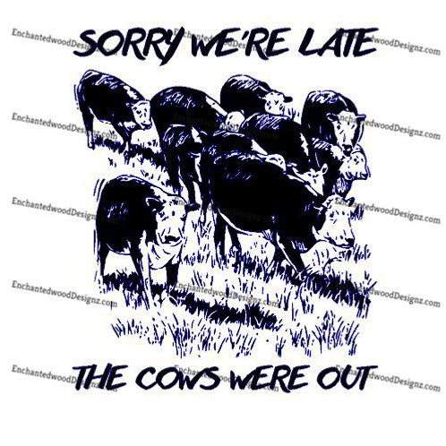 Late - Cows were out