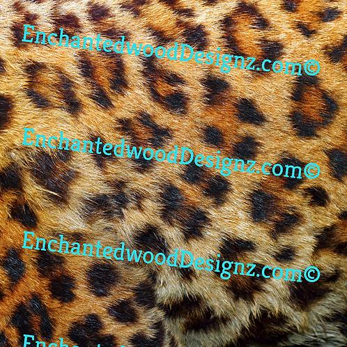 Animal Skin/Fur  Cheetah 12