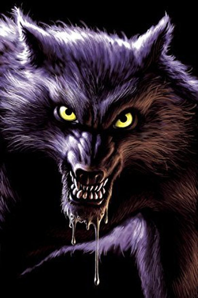 "WOWindow Posters Werewolf Halloween Window Decoration 34.5""x60"" backlit plastic"