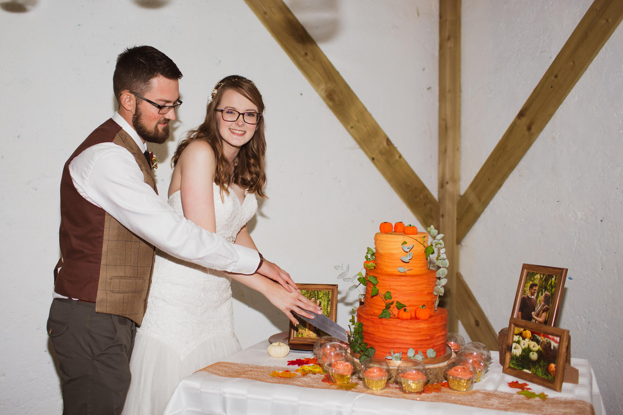 Wedding at Cholderton Charlies Farm, wedding cake