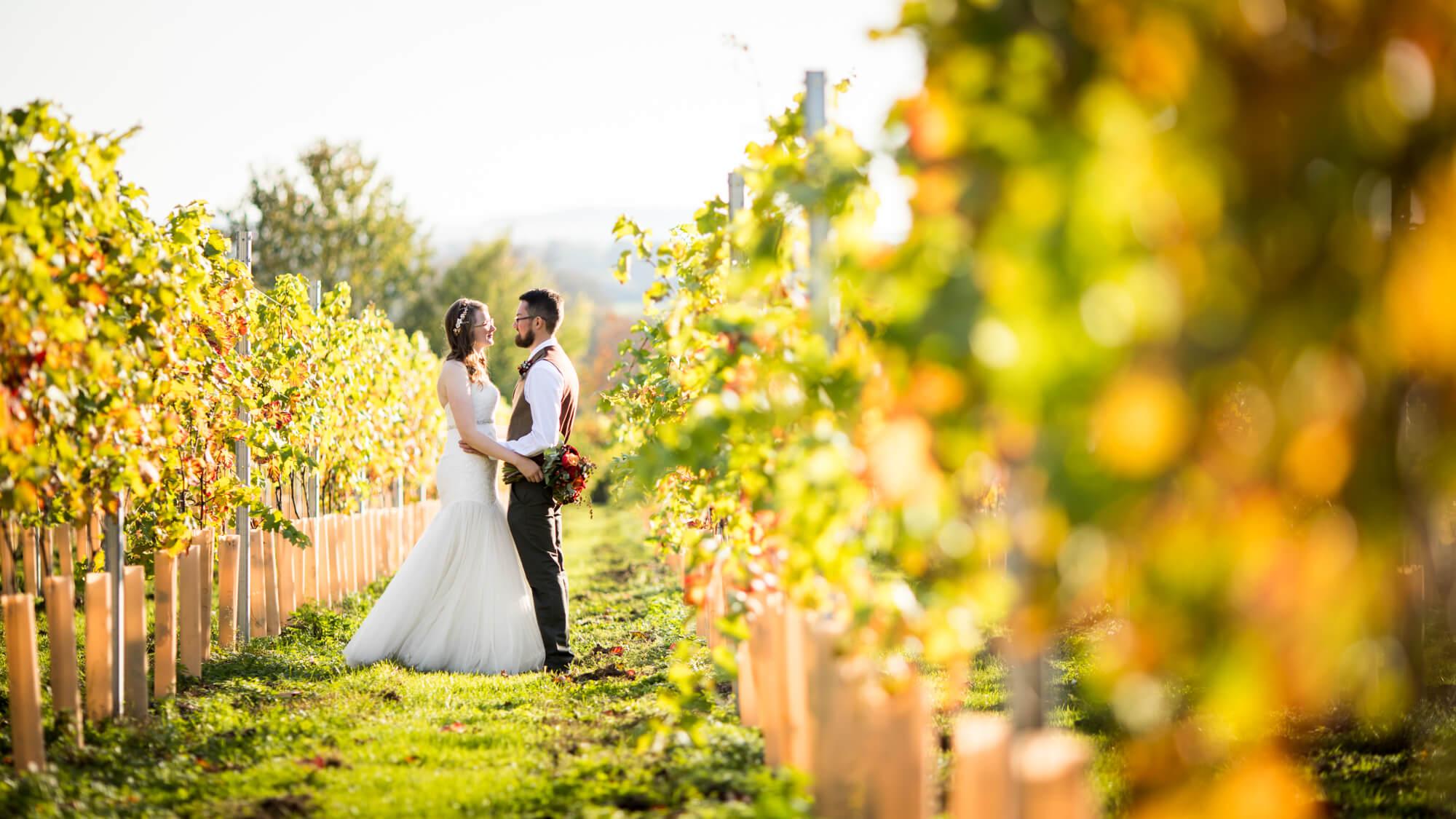 bride and groom, salisbury wedding photographer, vineyard