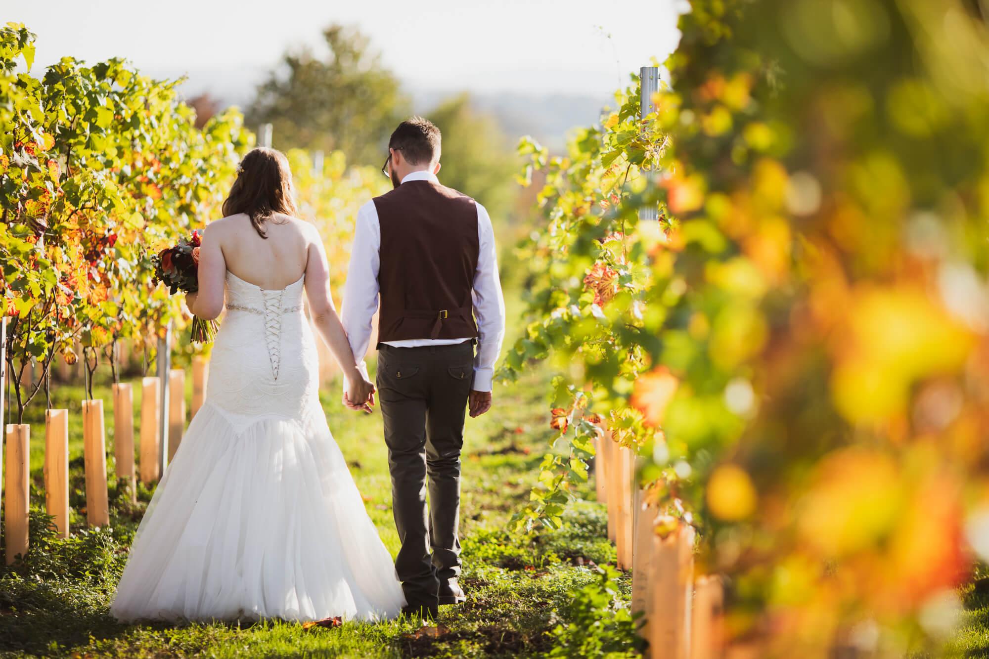 bride and groom in vineyard, salisbury wedding photographer