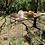 Thumbnail: Timber Bar Table