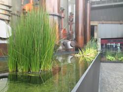 Fontaine Esch Belval