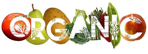 Organic and Global Gap Certification