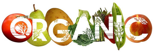 Organic and Global Gap Certification