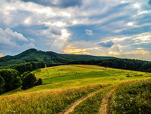 Ukraine_Fields_Forests_Sky_Zakarpattia_5