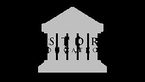 TRANSPARENT WHITE Historia 8k Logo.png
