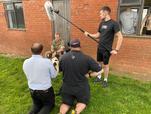 Hidden Histories - Defence Animal Training Regiment