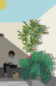 corte casa granados anturios 3.jpg