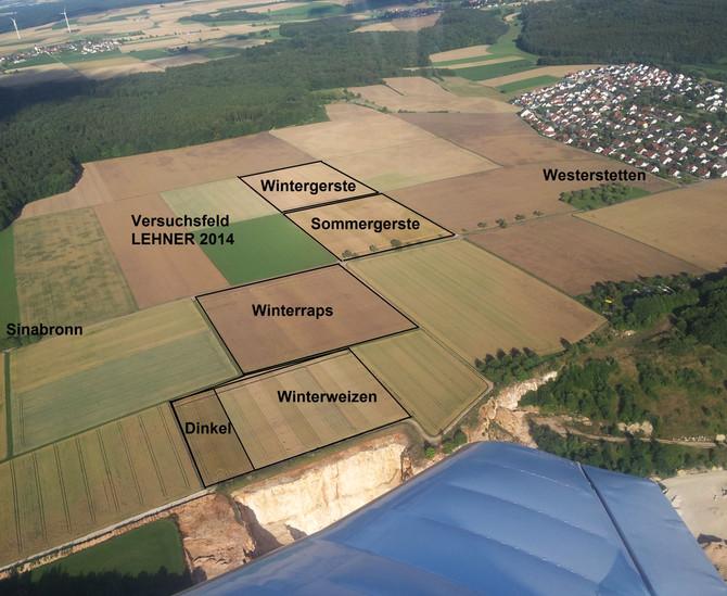 Versuchsfeld 2014