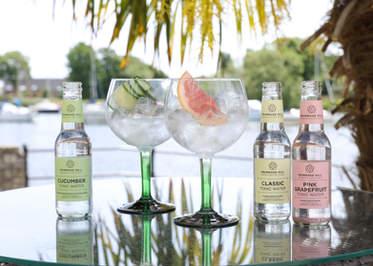 Summer Gin & Tonics